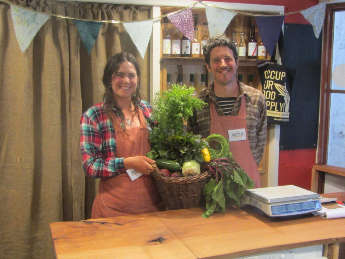 Harvest Farm Shop – reworked