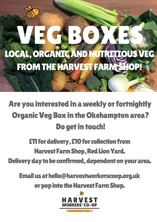 The Harvest Vegetable Box!