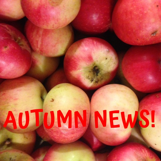 Autumn News from Harvest Workers' Co-op