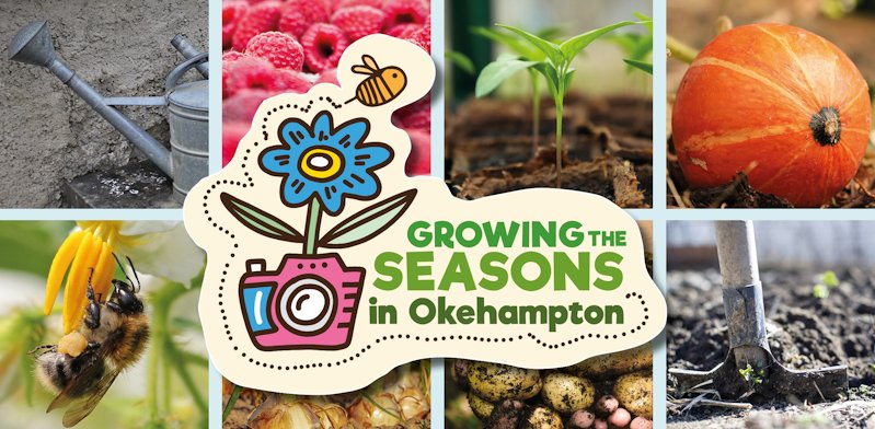 Growing the Seasons – a community photography project