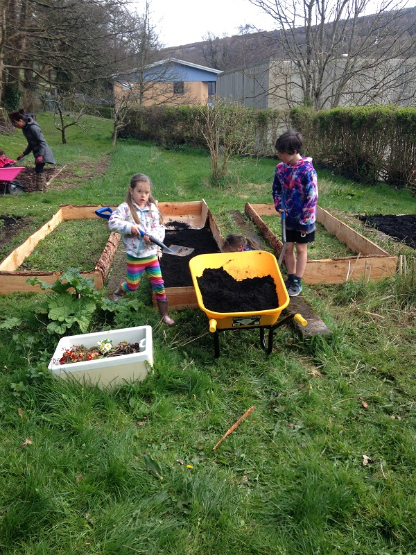 Transforming the EcoHub Garden