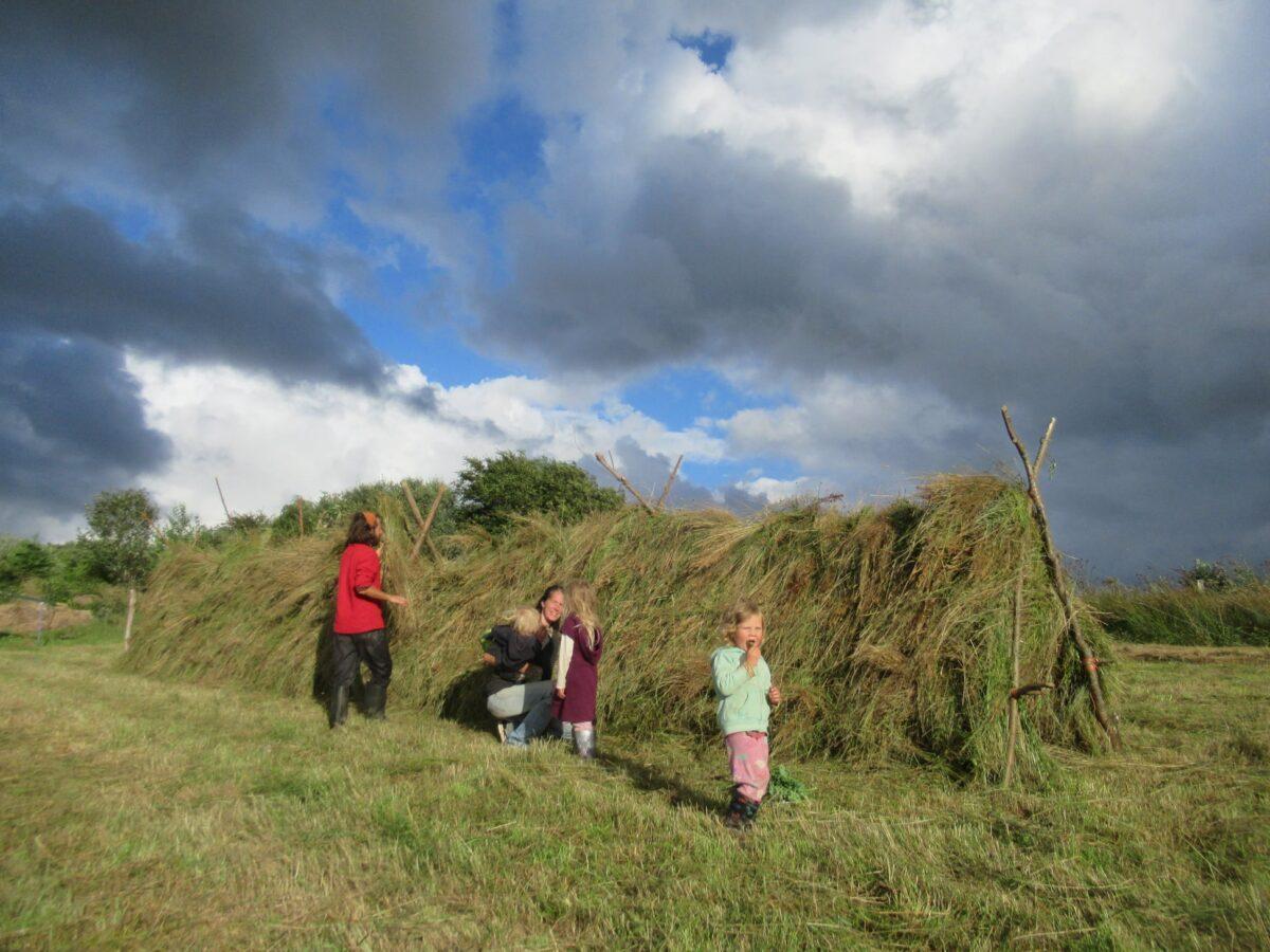 Harvest Haymaking